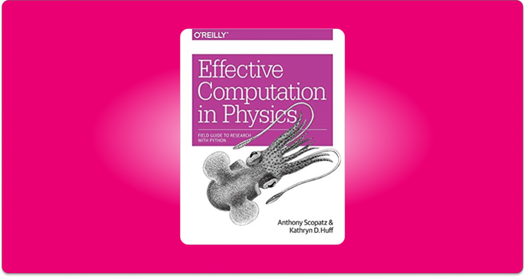 effective computation in Physics pdf free download